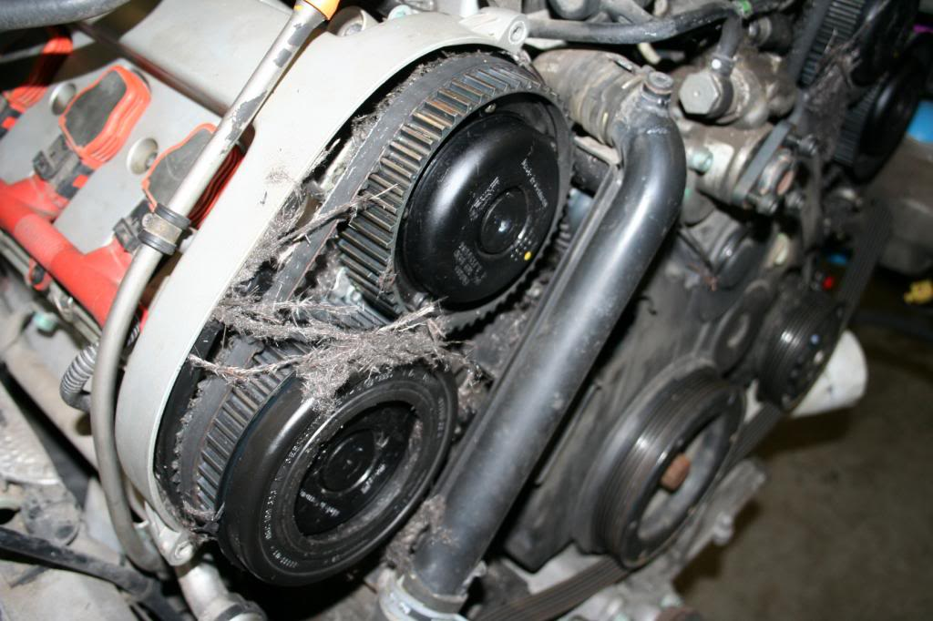 The Ultimate Audi Timing Belt Guide - Wolf Auto Parts Blog | Audi Timing Belt |  | Wolf Auto Parts Blog